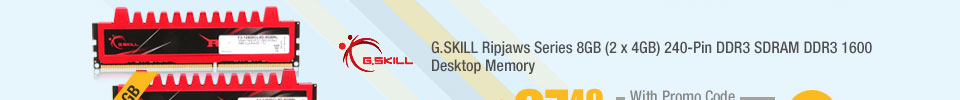 G.SKILL Ripjaws Series 8GB (2 x 4GB) 240-Pin DDR3 SDRAM DDR3 1600 Desktop Memory