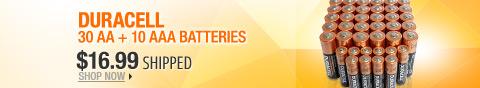 Newegg Flash – Duracell 30 AA + 10 AAA Batteries