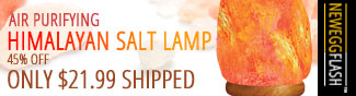 AIR PURIFYING HIMALYAN SALT LAMP. 45% OFF ONLY $21.99 SHIPPED. NEWEGGFLASH.