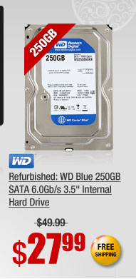 "Refurbished: WD Blue 250GB SATA 6.0Gb/s 3.5"" Internal Hard Drive"