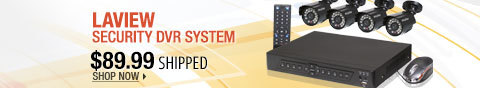 Newegg Flash - LaView Security DVR System
