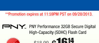 PNY Performance 32GB Secure Digital High-Capacity (SDHC) Flash Card