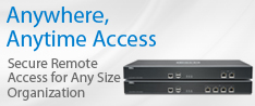 Secure Remote Access for Any Size Organization