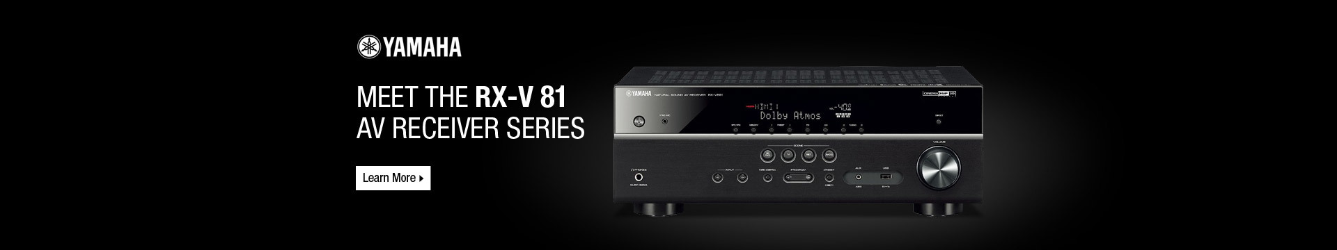 Meet the RX-V 81 AV receiver series