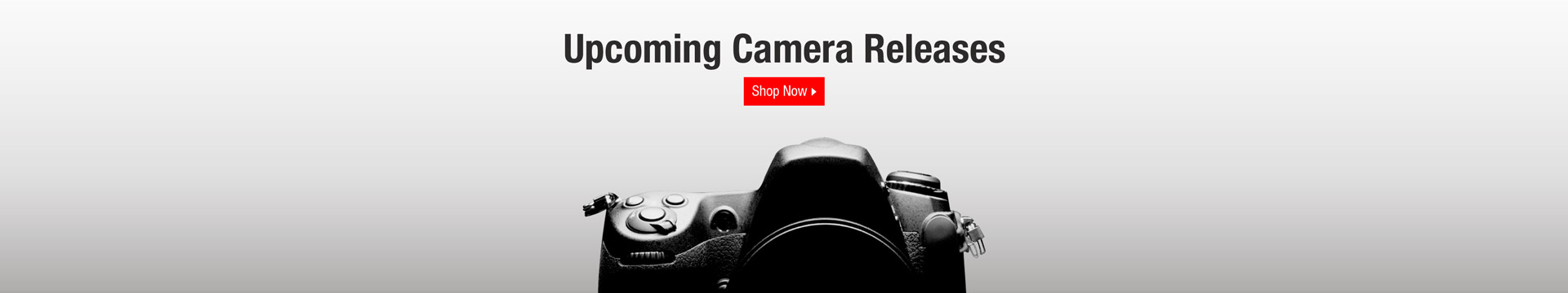 Digital Cameras And Accessories Neweggcom - Free invoice template for mac online camera stores