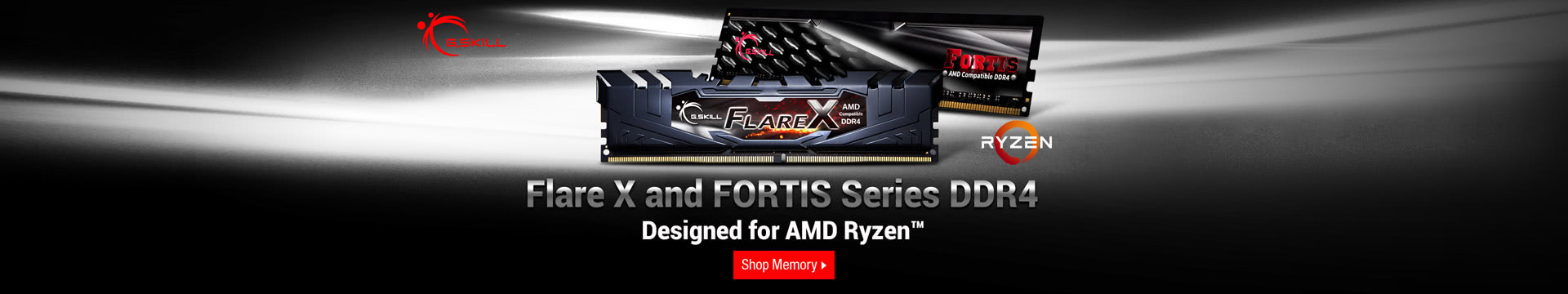 FLARE X AND FORTIS SERIES DDR4