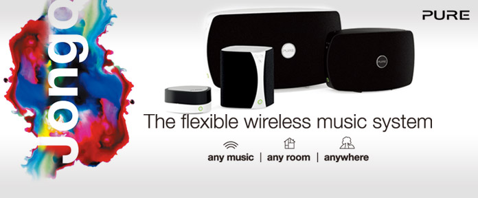 The flexible wireless music system
