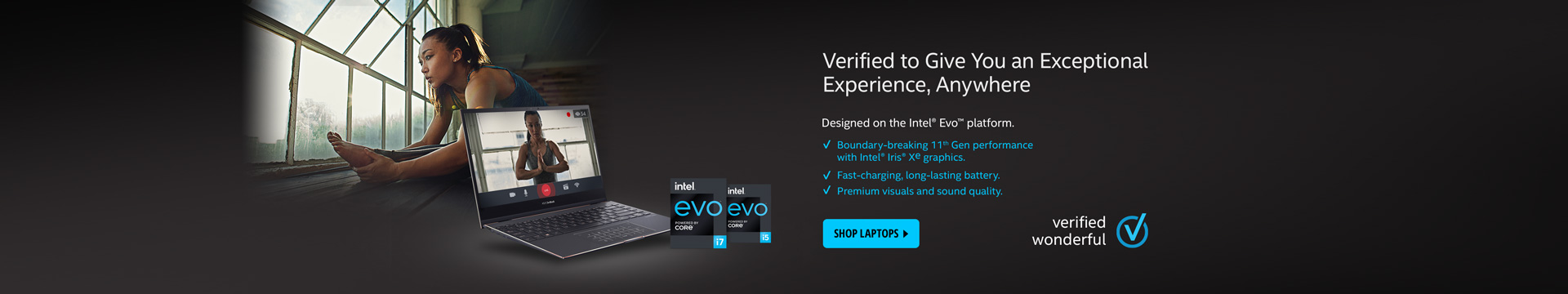 Intel® Evo™ Platforms