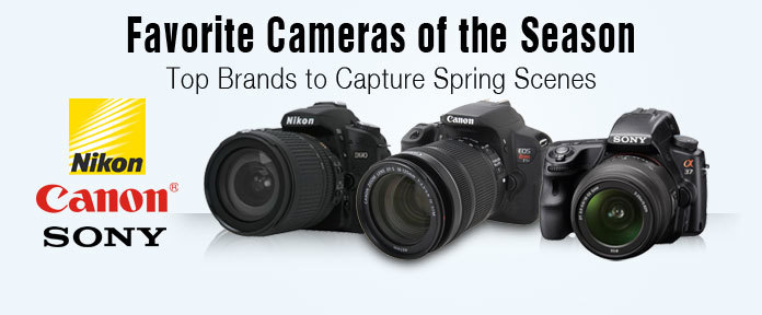 Favorite Cameras of the season