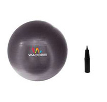 Wacces Fitness & Yoga Ball + Air Pump (3 Colors)