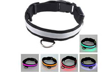 Rainbow Color Flashing LED Pet Collar (3 Sizes)