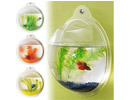 Wall Mounted Fish Tank Aquarium Kit