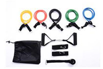 Soozier 11-Piece Resistance Band Set with Carrying Case