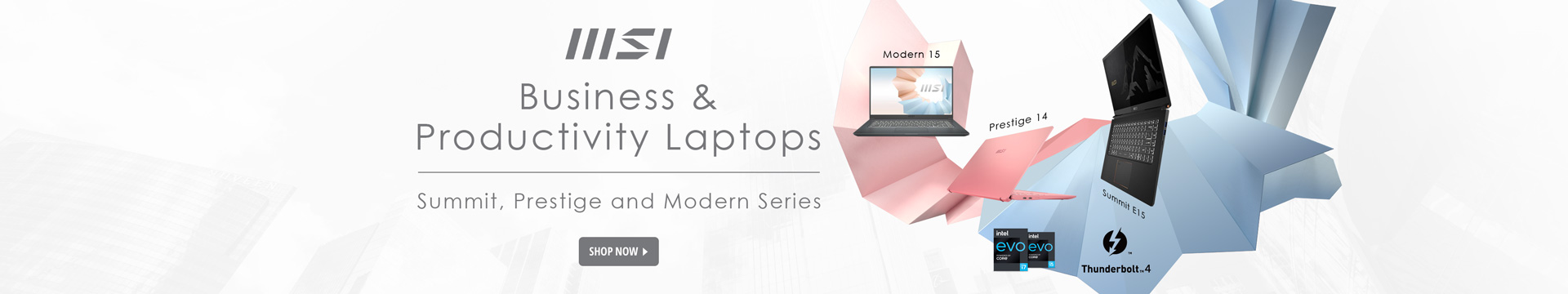 Business & productivity laptops