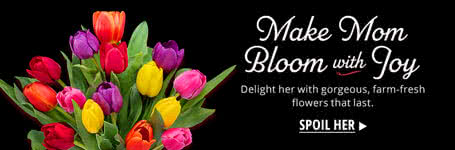 Make Mom Bloom with Joy
