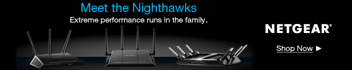 Meet the Nighthawks