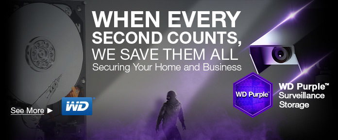 Securing Your Home and Business